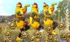 [СОБЫТИЕ] Март куриных медалей!